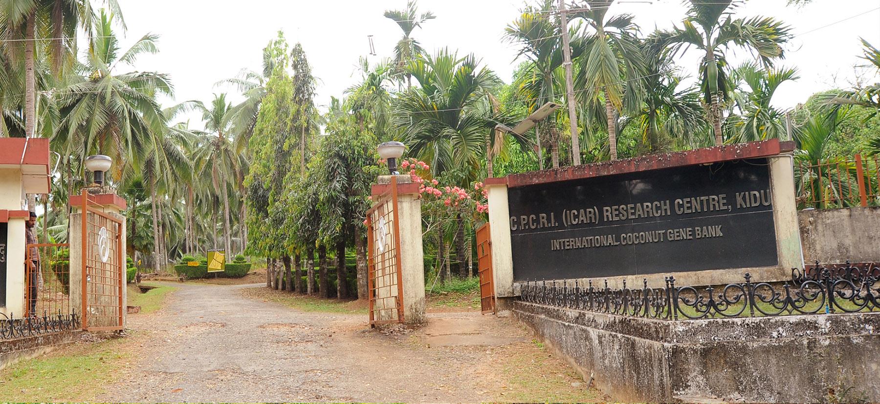 ICAR - CPCRI Research Centre, Kidu